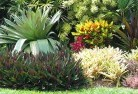 Wheatlands Bali style landscaping 6old