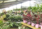 Wheatlands Garden centre 5